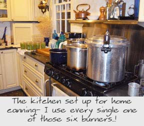 Home Canning Our Kitchen